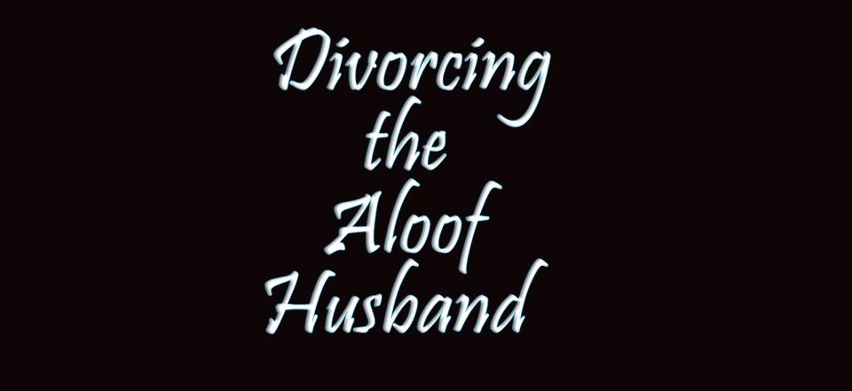 Image of Divorcing the Aloof Husband