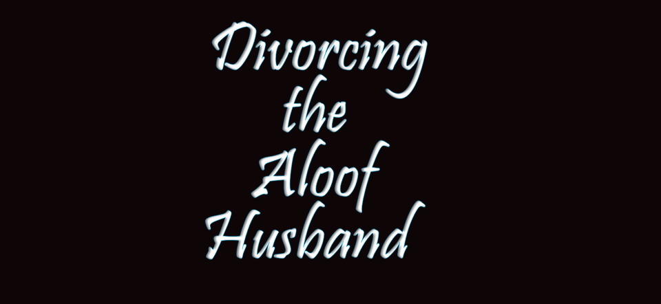 Image of Divorcing the Aloof Husband