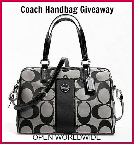 coach handbag ww