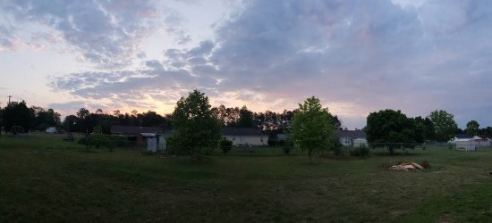 home improvment goals for 2019, sunset on the backyard