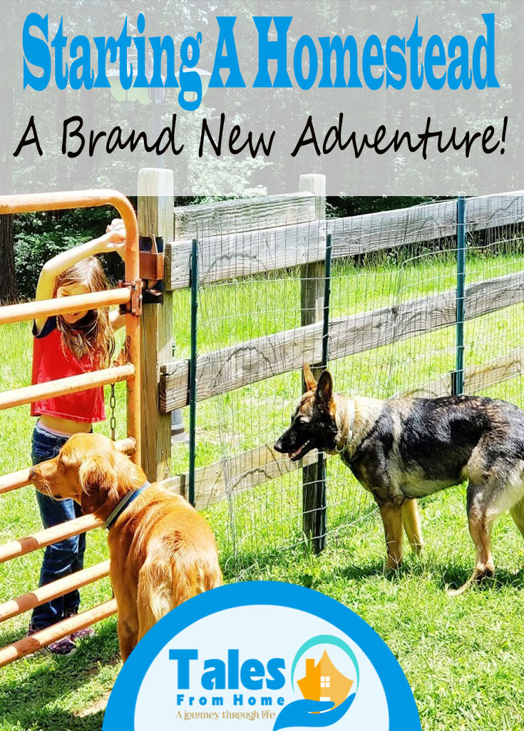 Starting a Homestead, brand new adventure #homesteading #selfsufficiency #familylifestyle #lifestyle #kids #countryliving #lifechanges