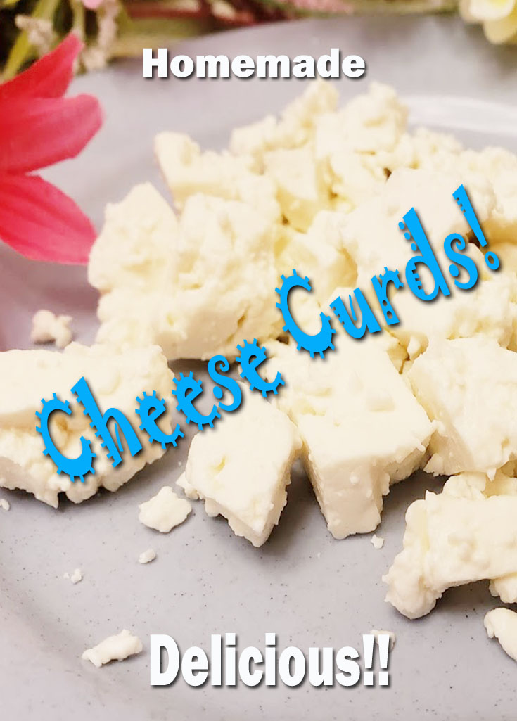 Making Homemade Cheese Curds, Another Hometeading, DIY, Try Something New Adventure! #homemade #cheese #homemdecheese #cheesecurds #DIY #trysomethingnew #food #recipes #cheesekit #productreview