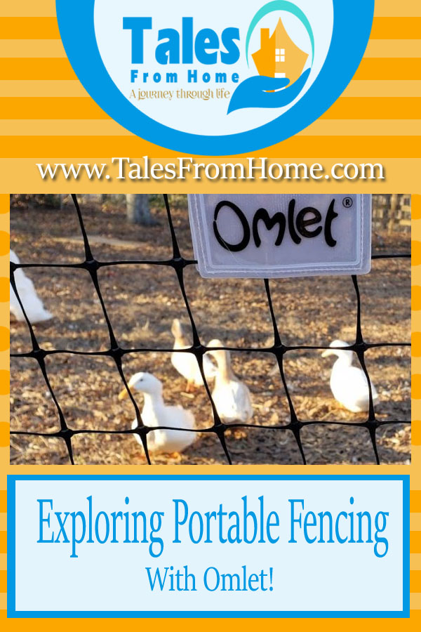Having trouble keeping all your ducks (or chickens!) in a row? Portable fencing might be your answer! It's cheaper, customizable and easy to install. It worked perfectly for us and it might work out for you too, come and read about the pro's and cons of portable fencing #poultry #ducks #chickens #omlet #homesteading #homesteader #countrylife #lifestyle #chickenkeepers #chicks #backyardchickens