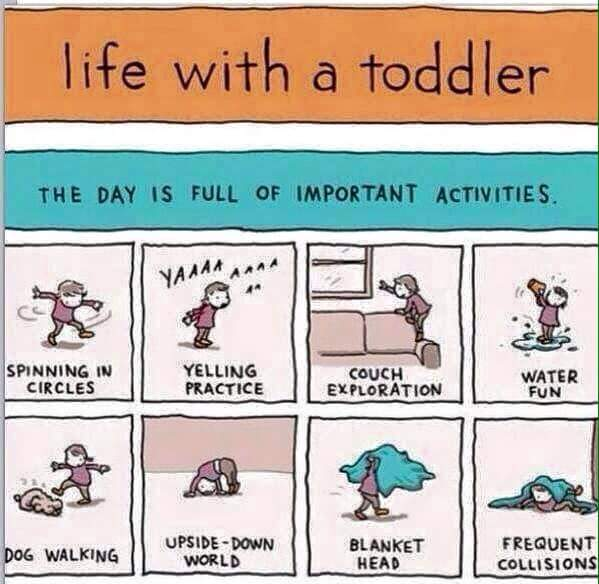 A day in the life of a toddler and his mum…