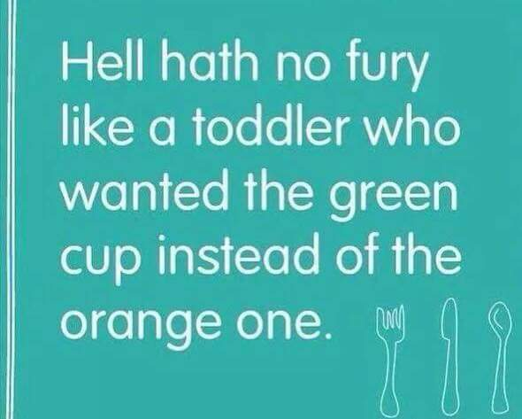 toddler quote