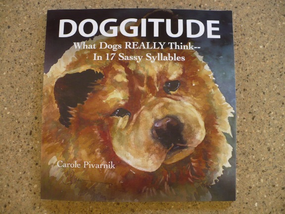 Doggitude giveaway