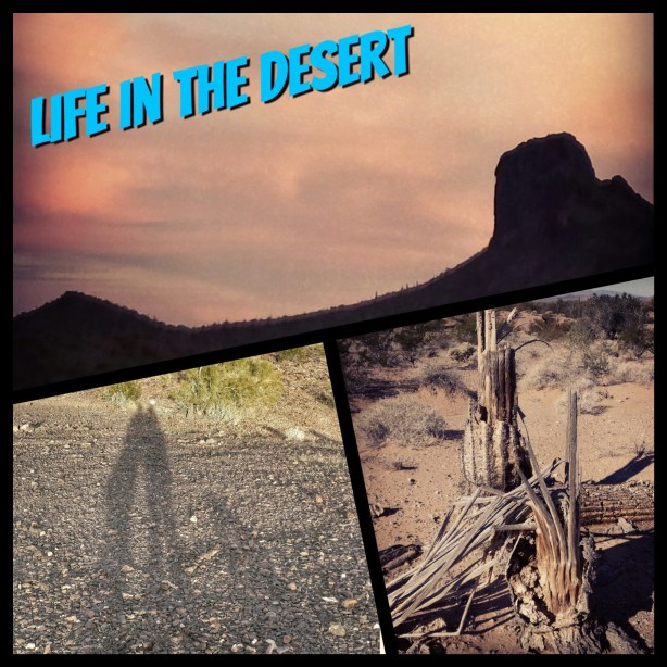Fun photo collages in the desert