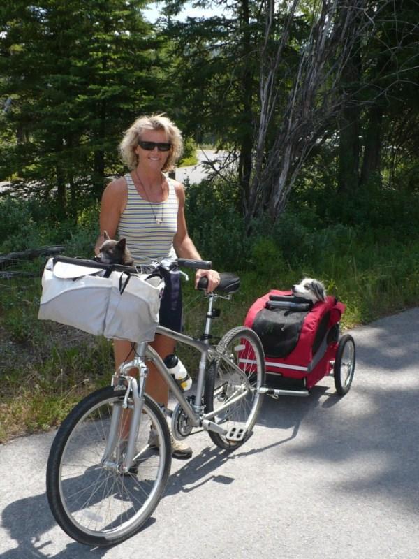 Solvit hound about dog bike trailer