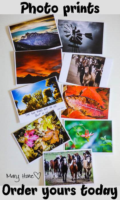 Photo prints for sale