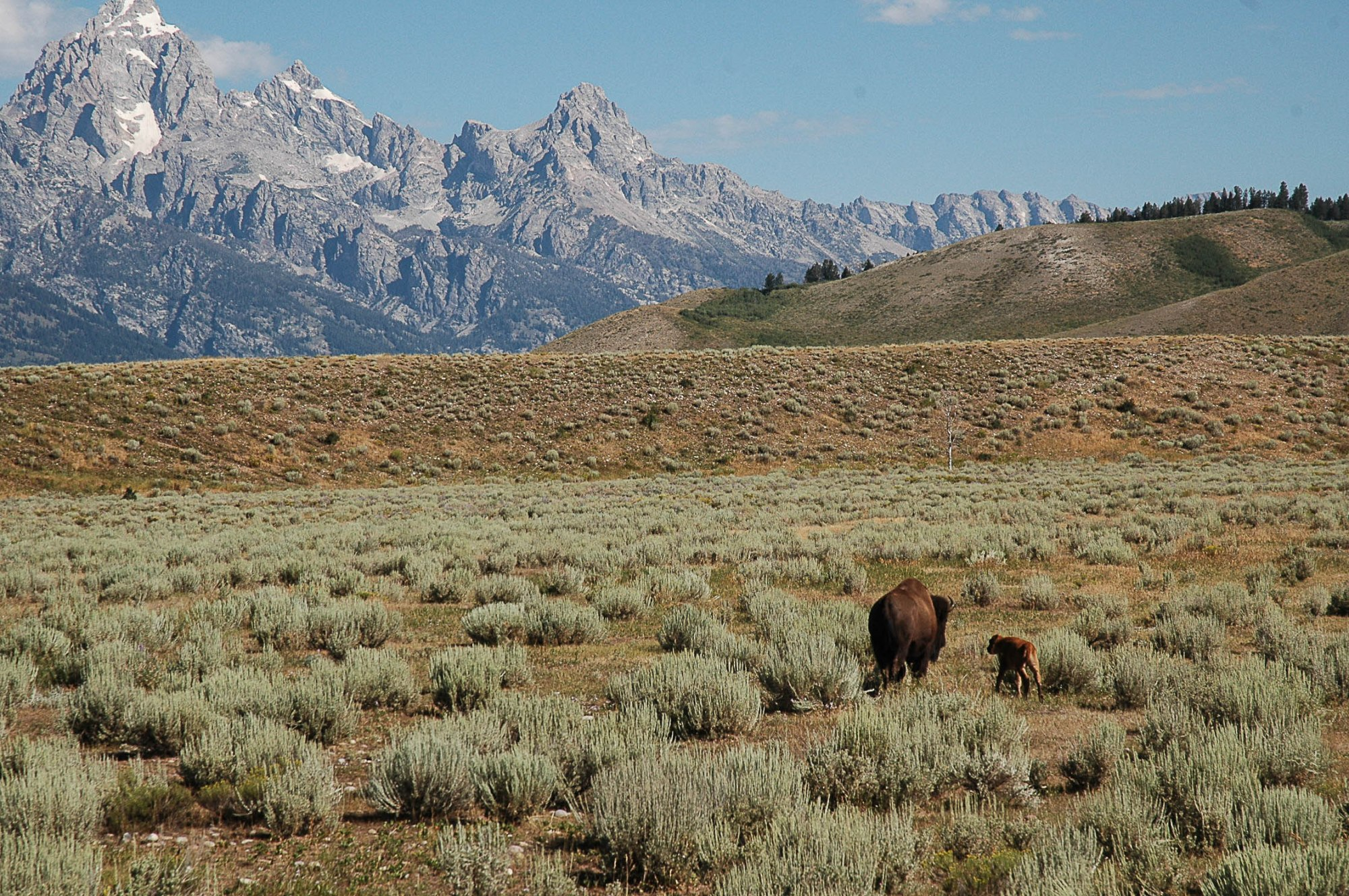 All the beautiful places. The Tetons