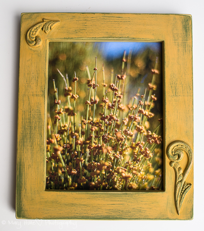 One of a kind photo frame
