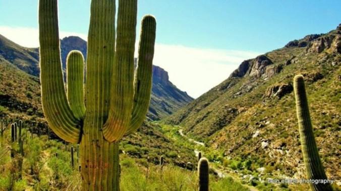 YqXW-sabino-canyon-catalina-foothills-arizona-1024x576