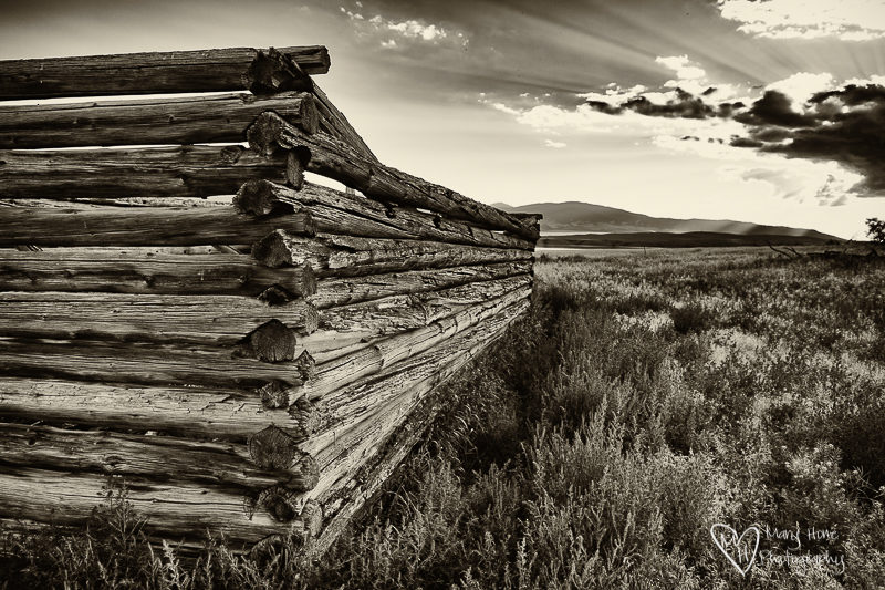 Old Montana homestead