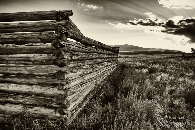 Old Montana homestead