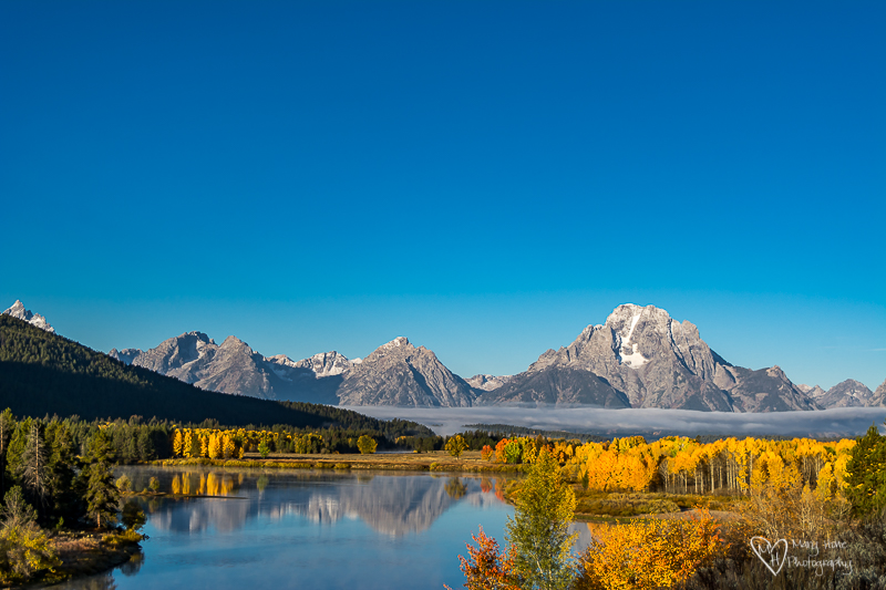 Oxbow bend. Mount moran in the fall