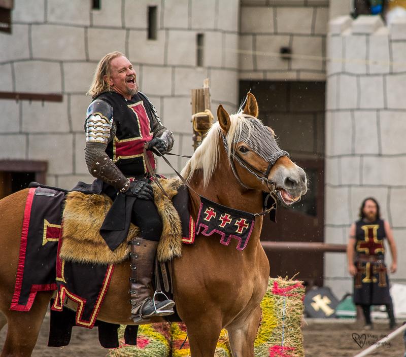 Knights in Shining Armor