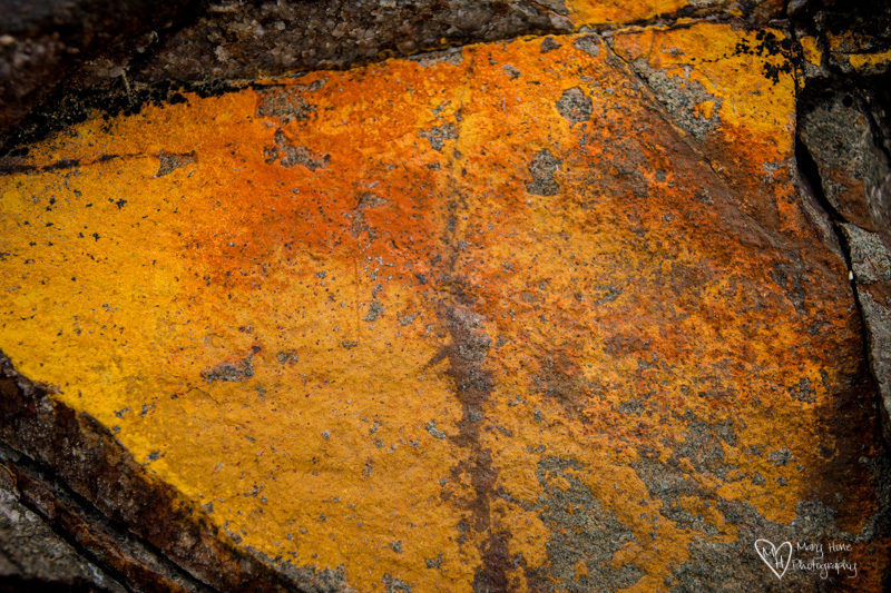 Desert Textures yellow rock