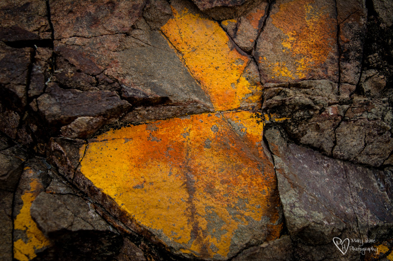 Desert Textures yellow stone