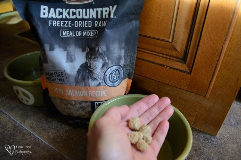 merrick backcountry dog food