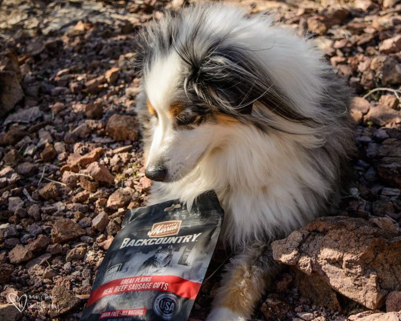 Merrick Backcountry dog treats, Backcountry Dogs, Deserve Merrick Backcountry Food and Treats