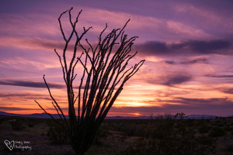 split tone sunset