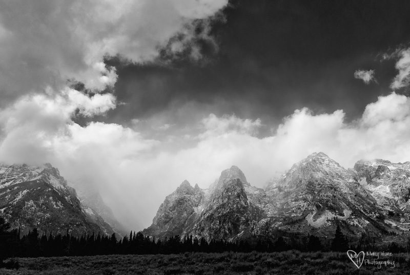 tetons in b/w