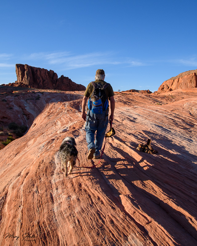 Valley of fire hiking with dogs