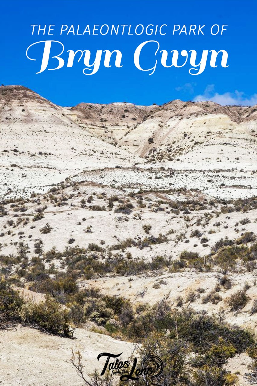 Pin It - A one day trip from Trelew brought us to the town of Gaiman where we saw an almost full solar eclipse and visited the paleontologic park, Bryn Gwyn, known for its incredible fossil finds. https://talesfromthelens.com/2017/07/16/bryn-gwyn-paleontologic-park/