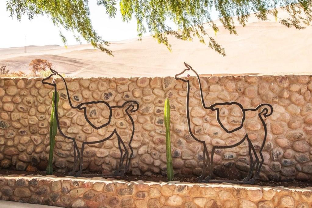 The Mummies of the Azapa Valley