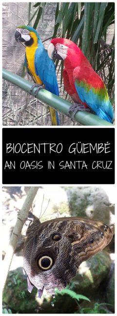Biocentro Guembe, an oasis in Santa Cruz