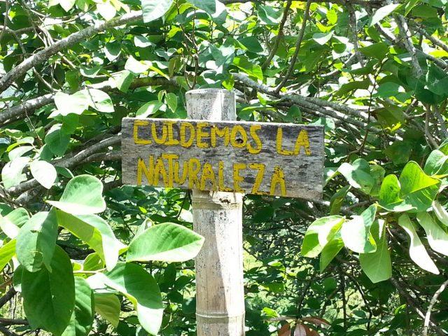 """""""Cuidemos la Naturaleza"""" - we should look after nature"""