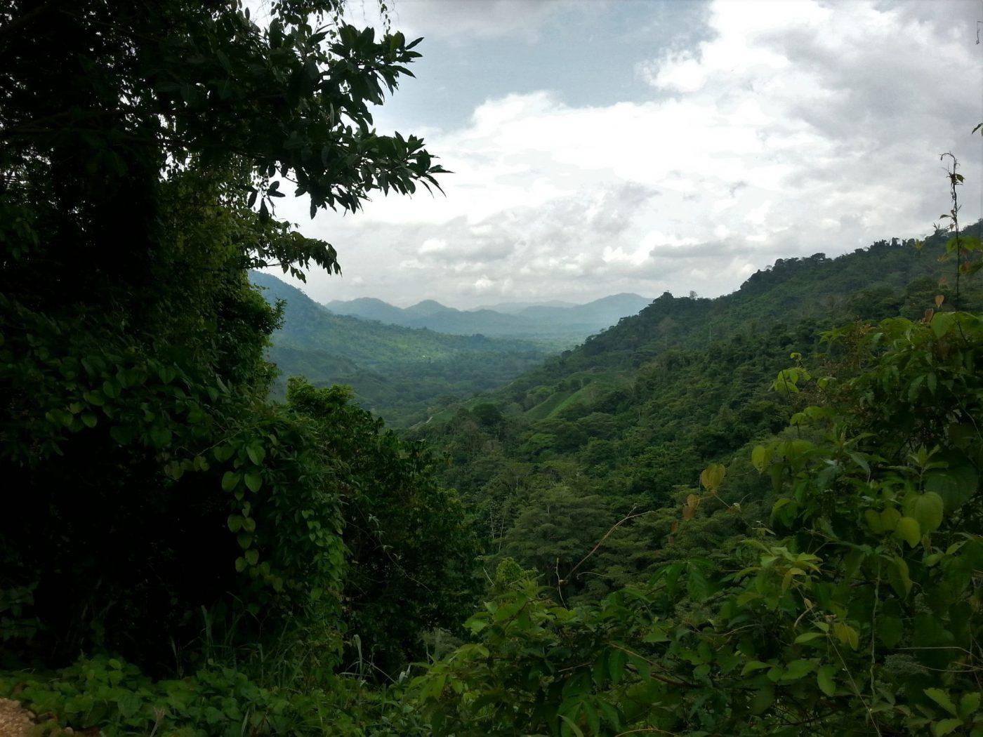 Ciudad Perdida Tour: The Lost City Trek Colombia