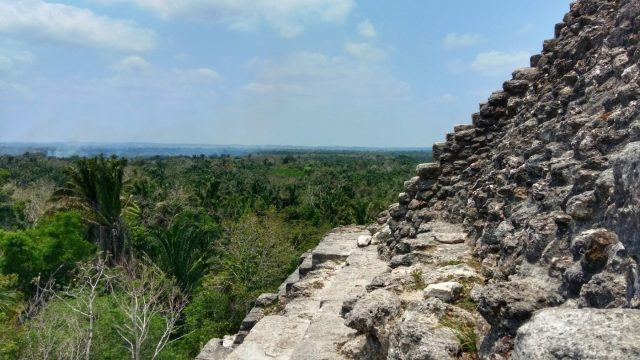 The View from the Top of the High Temple at Lamanai Mayan Ruins in Belize