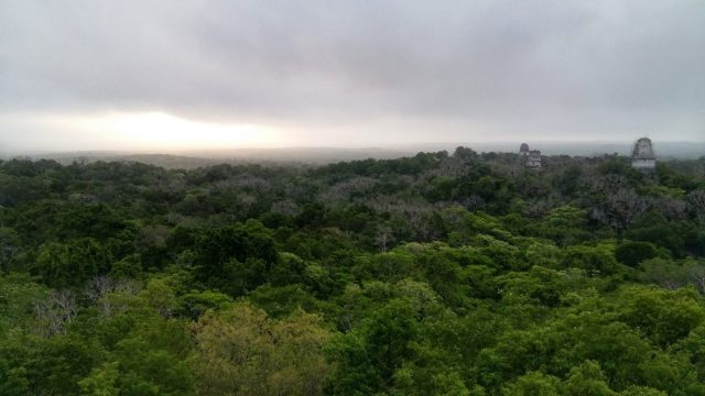 Waiting for the famous Tikal sunrise, which sadly never came!