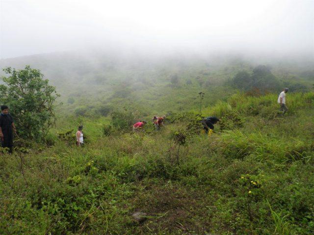 Volunteering in the highlands of San Cristobal - volunteering Galapagos Islands