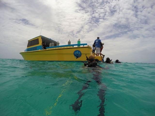 Making our way back to the Utila Dive Center Boat after a dive