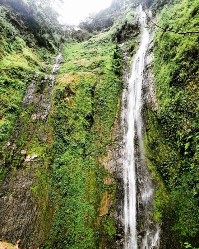 Hike to a Waterfall on Ometepe Island