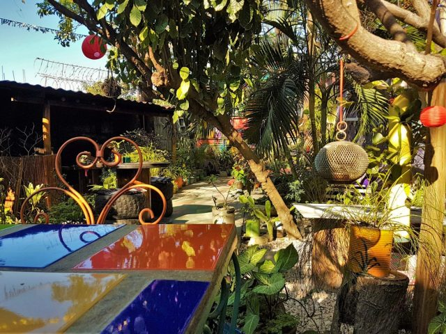 The Garden at Simon Says in San Juan del Sur Nicaragua. Credit: The Lost Romanian