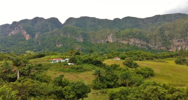 Luscious green Vinales Valley in Cuba with Mogotes in the background