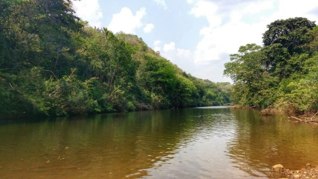Swim or Canoe in the River at San Ignacio Belize - Things to do in San Ignacio Belize without a guide