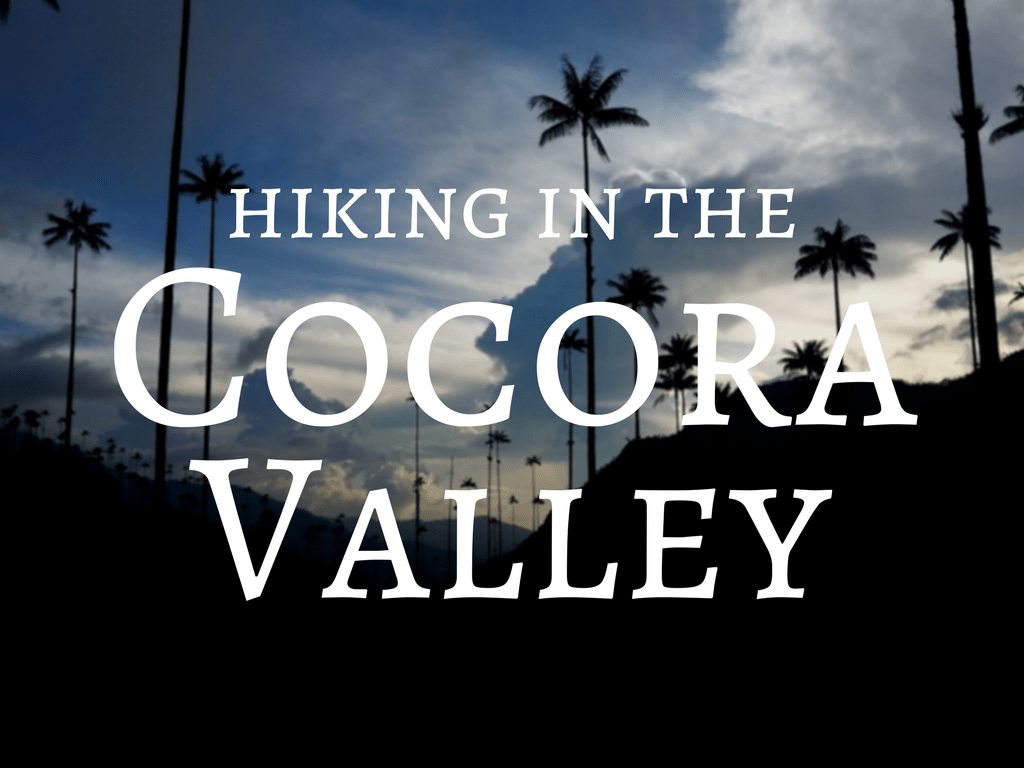 Hiking the Cocora Valley - Backpacking in Colombia