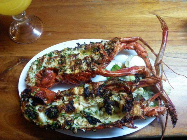 A large (tasty) lobster - Backpacking Ecuador Travel Blog