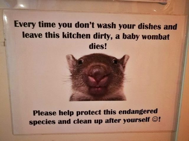 Clean Your Dishes Sign at Wombat's London - Staying in a Hostel for the First Time