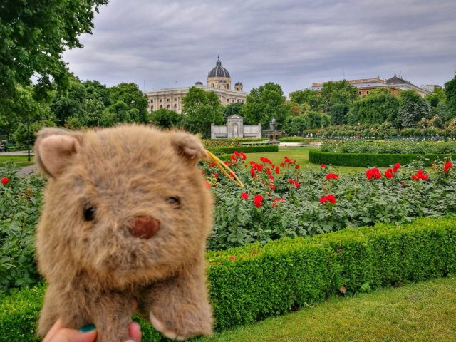 Where's Wagner Wombat? In the Volksgarten - Places to Visit in Vienna in 2 Days