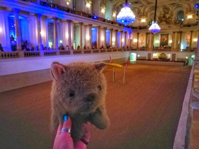 Where's Wagner Wombat - The Spanish Riding School Vienna. Places to Visit in Vienna in 2 Days