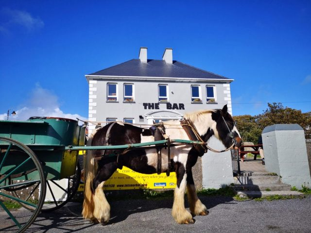 A Horse and Cart on Inis Mor, the Aran Islands