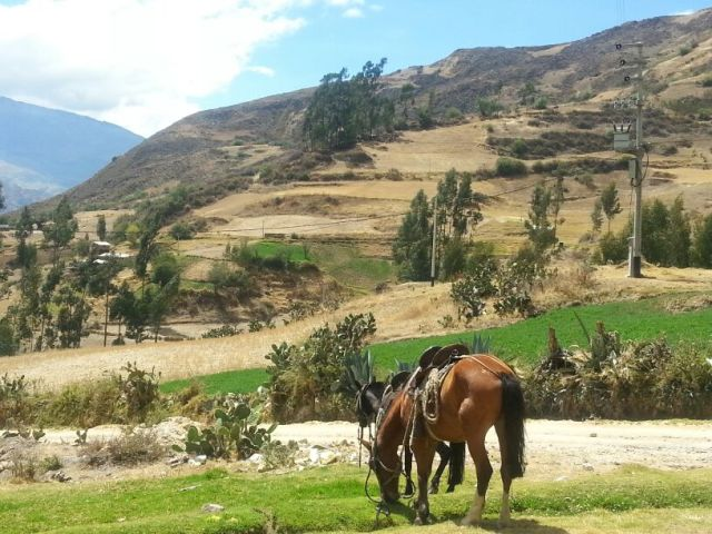 Horse Riding in Huaraz Peru