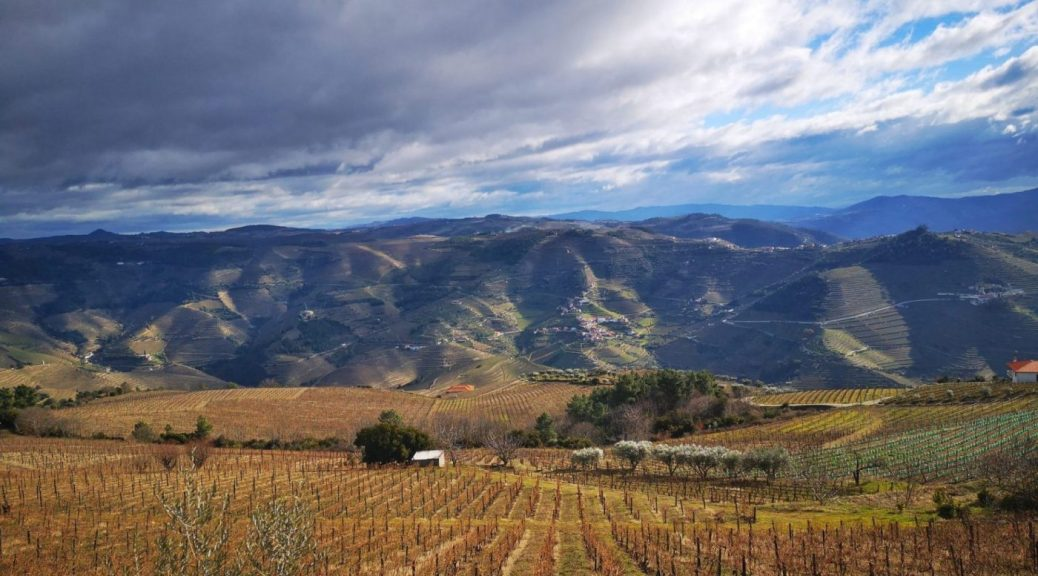 A Sunny Winter Day in the Douro Valley
