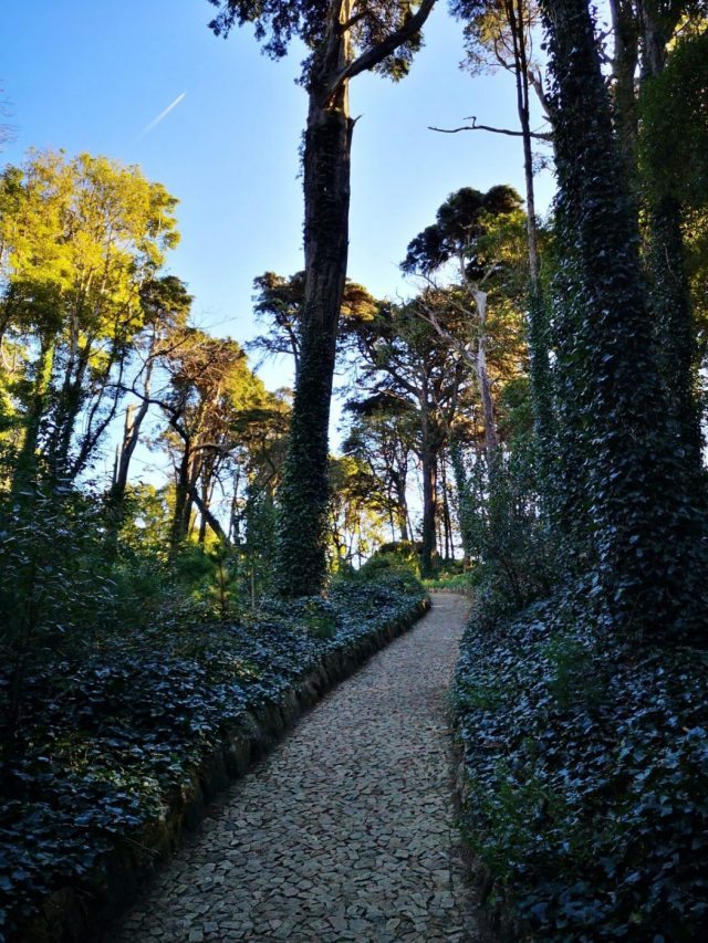 Walking through Pena Palace Park & Gardens