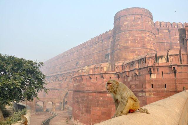 Fort Agra India - Fairytale Castles Around the World